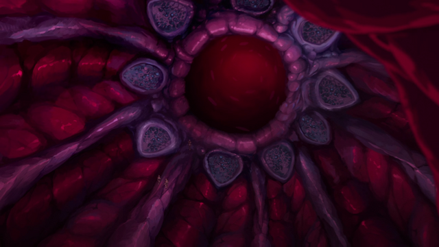 File:S2E09.216. Scaultrite gland within the third stomach.png