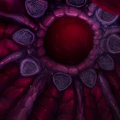 Scaultrite gland within the third stomach.