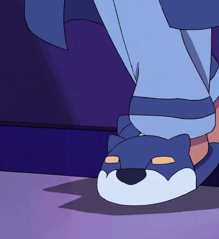 File:Lance's Slipper.png