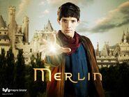 Merlin-008