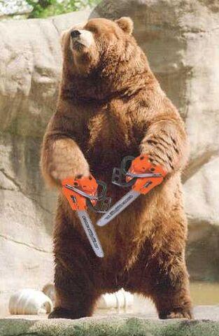File:Ce564844ede058ebceb485f1d0775d94--bears-game-brother-bear.jpg