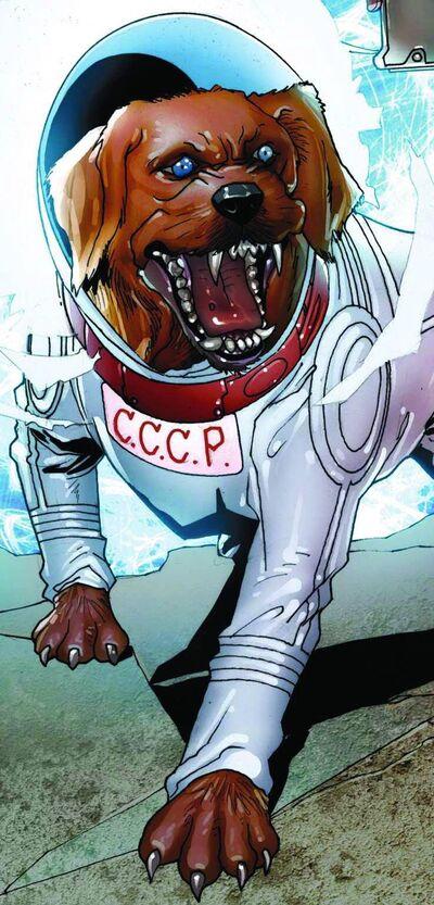 Cosmo (Dog)