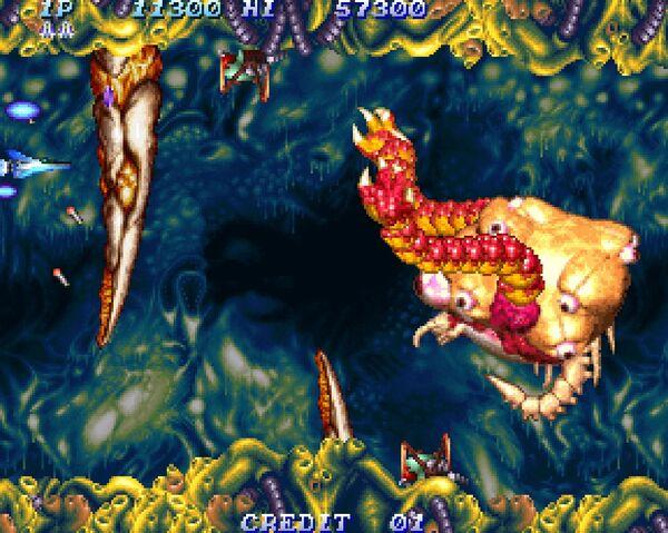 File:Salamander2.jpg