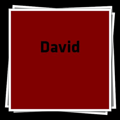 File:DavidIcon.png