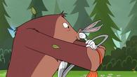 Bugsfoot10