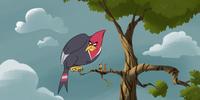 Duncan the Bird