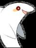 Sal (shark form) 1