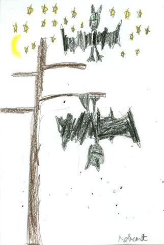 File:Robert Pawlowski Bats.jpg
