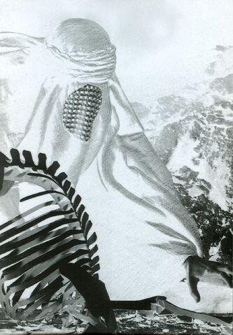 File:Ruggero Maggi Shadow\'s veil.jpg