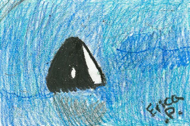 File:Erica Parnis Killer Whale.jpg