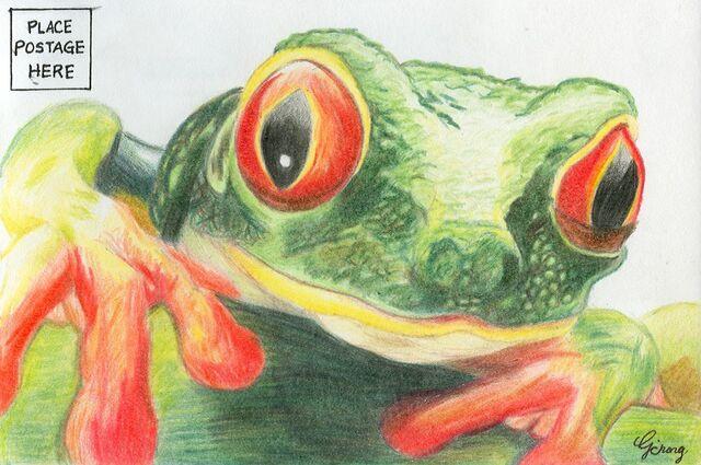 File:Catherine Chong frog.jpg
