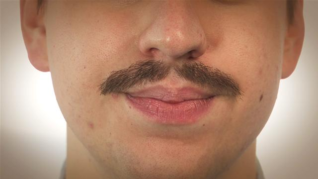File:Moustaches.jpg