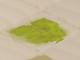 Tree soil Sufokia