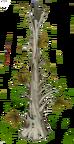 Dry Pine