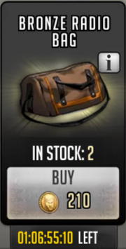 Bronze radio bag