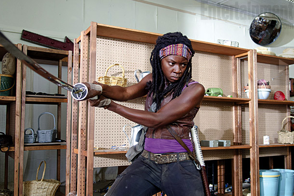 File:Michonne.1.1.png
