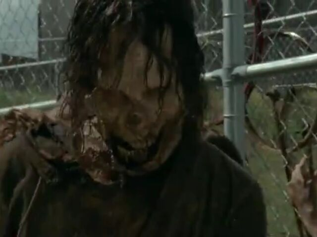 File:Walker outside the fence.jpg
