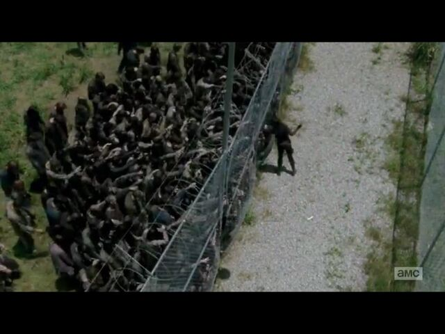 File:Maggie vs. Walkers.jpg
