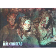 The Walking Dead - Sticker (Season 2) - S15 (Foil Version)