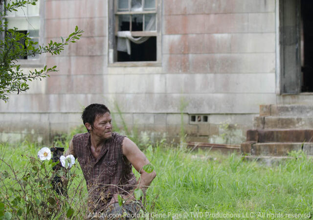 File:Episode-4-daryl.jpg