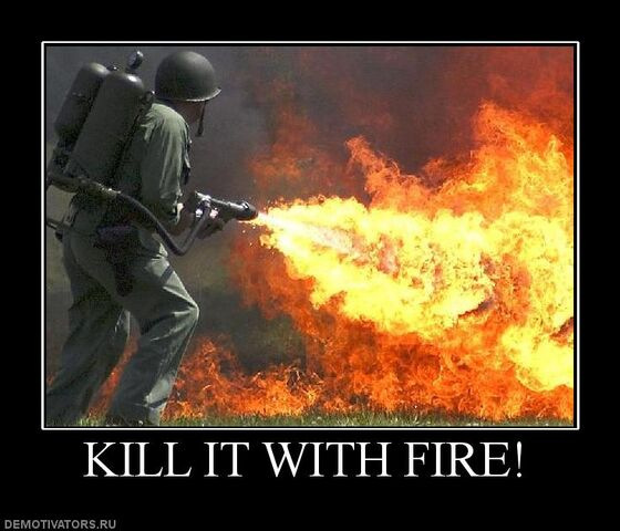 File:269209 kill-it-with-fire.jpg