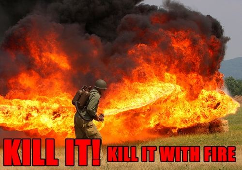 File:KILL-IT-WITH-FIRE-FUNNY-FORUM-PICS.jpg