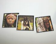 Michonne Character Cards