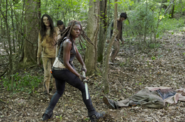 AMC 603 Michonne Woods