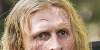 Dwight (TV Series)