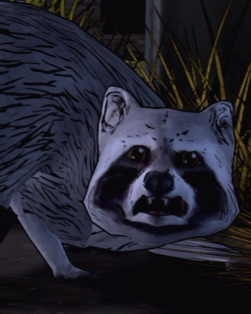 File:UnnamedRacoon.jpg