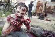 Vatos Zombies