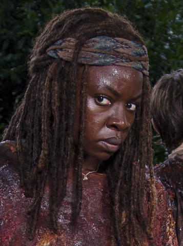 File:609 Michonne Camouflage.png