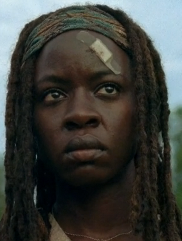 File:TFG Michonne.png