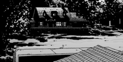 Issue 49 House
