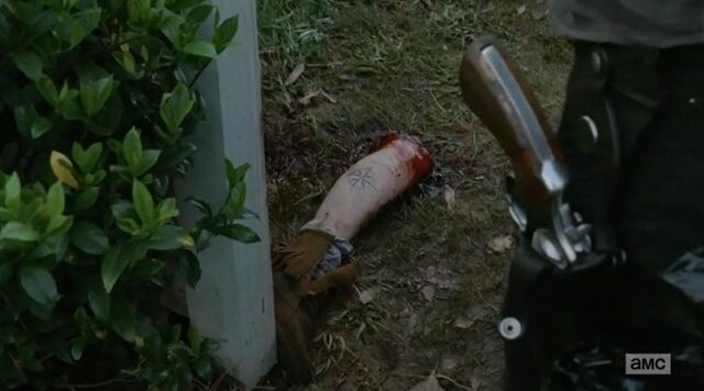 File:Ana-walking-dead-severed-leg-indifference zps3ac23757.jpg