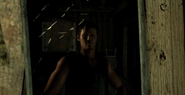 SI Daryl reflection