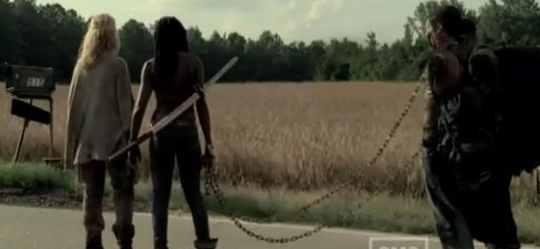 File:Michonne110.JPG