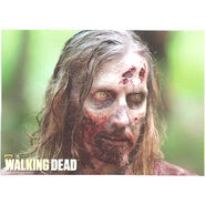 The Walking Dead - Sticker (Season 2) - S13