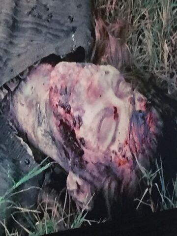 File:Governor kill.jpg