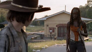 Clear Michonne K
