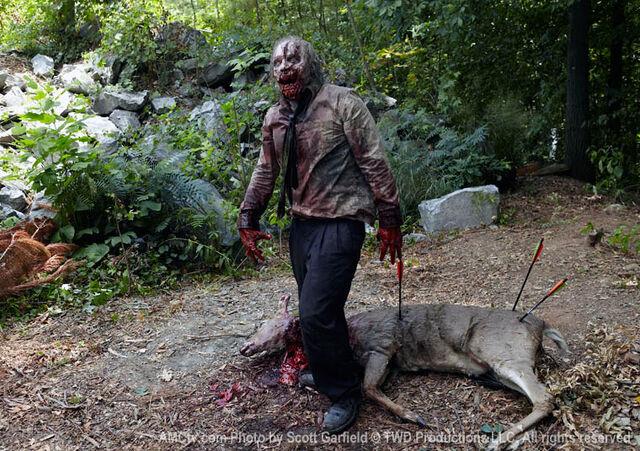 File:Walking-Dead-Zombie-Deer1.jpg