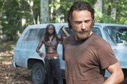 AMC TWD What Happened and What's Going On