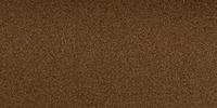 Elena Reyes (Fear The Walking Dead)