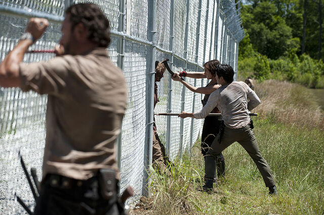 File:The-walking-dead-rick-glenn-maggie.jpg