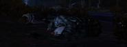 Carley's death