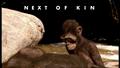 NextOfKinTitleCard.png