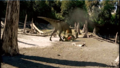 Tyrannosaurus Attack.png
