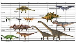 Dino-Size-Chart