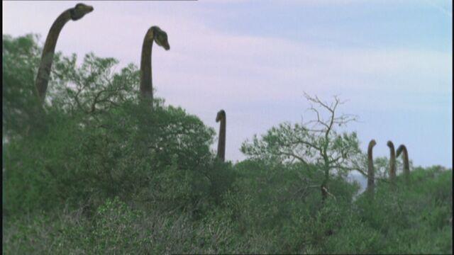 File:WWDPilot CetiosaurusHerd.jpg