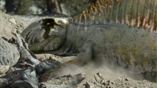 File:Dimetrodon digs.jpg